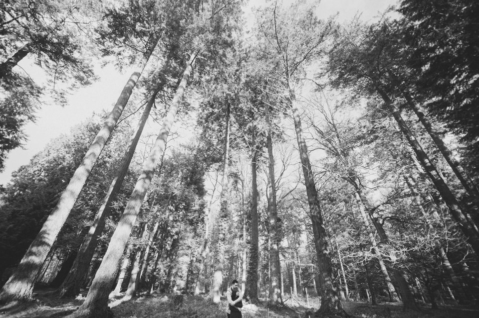 New Forest Wedding Photographer Engagement Session - GK Photography_0012