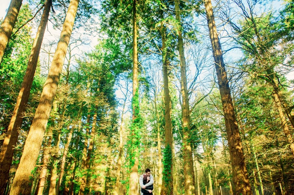 New Forest Wedding Photographer Engagement Session - GK Photography_0013