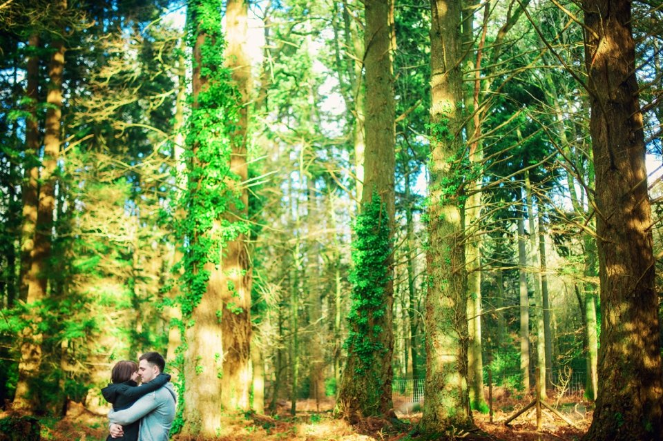 New Forest Wedding Photographer Engagement Session - GK Photography_0014