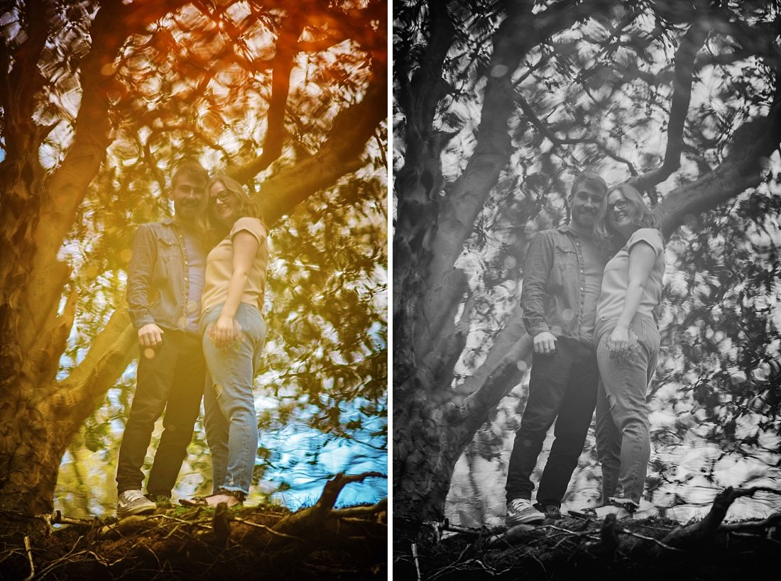 New Forest Engagement Photographer