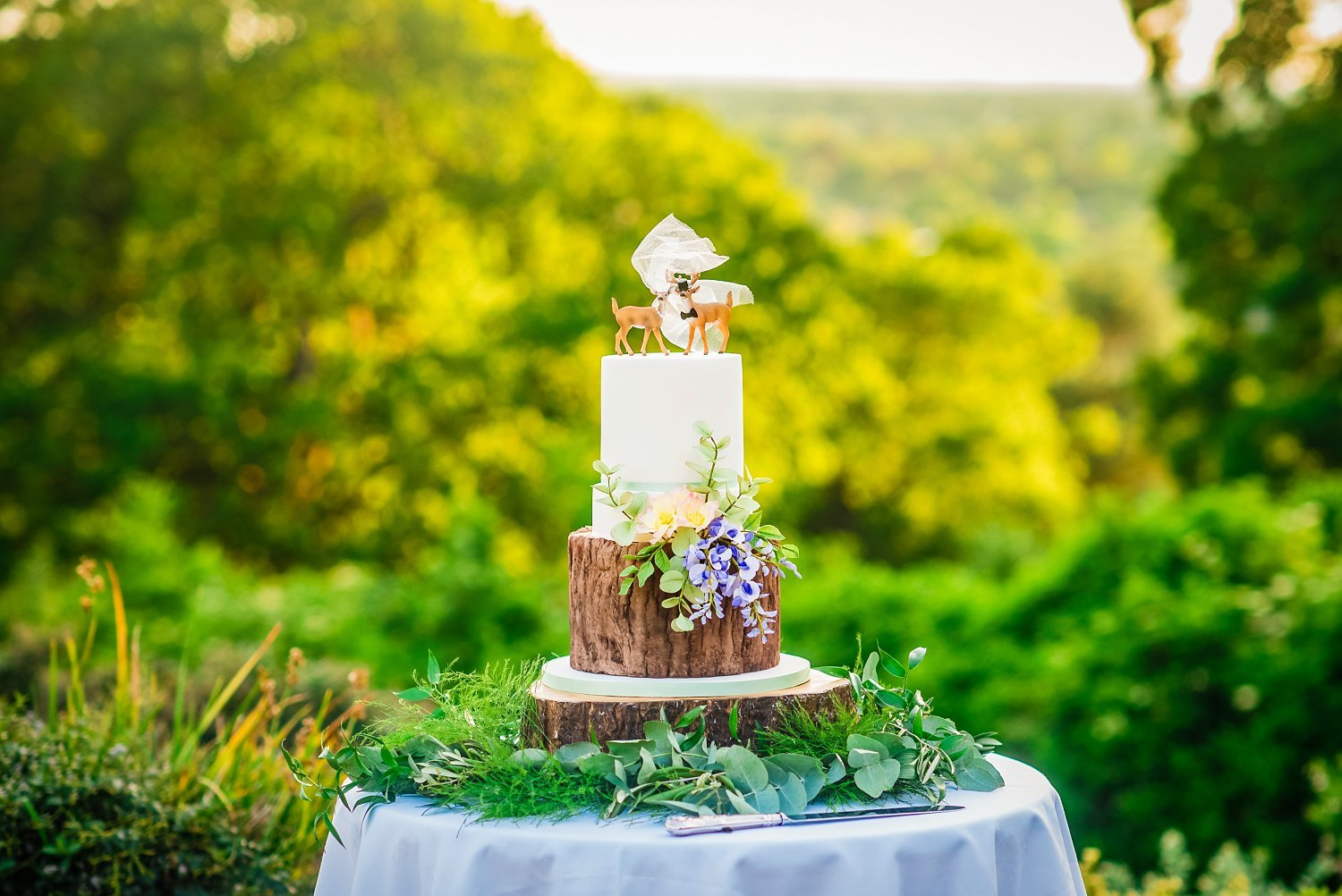 Fun-Filled wedding in Pembroke Lodge - wedding cake. it has reindeers on top. behind there are trees and greenery